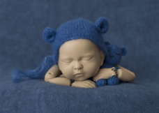 Blue Backdrop & Bear Bundle